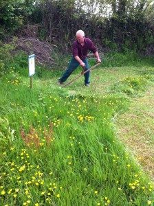 Scything as a way of grass management