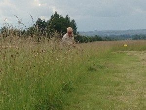 Mowing Lush British Meadow in at Wimpole