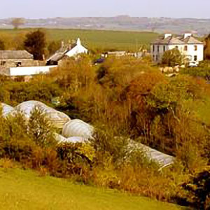 Keveral Farm