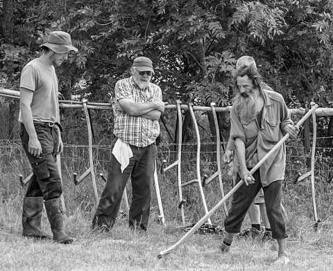 Group Wimpole Scything Competition