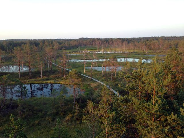 lakes, Estonia