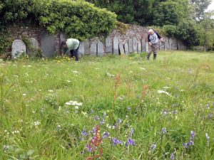 ScythingLiskeard Quakers burial ground