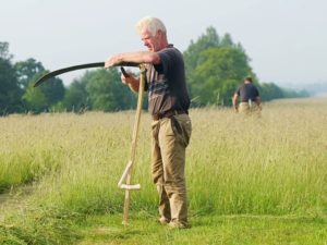 Wimpole National Scythe Competition - Kevin